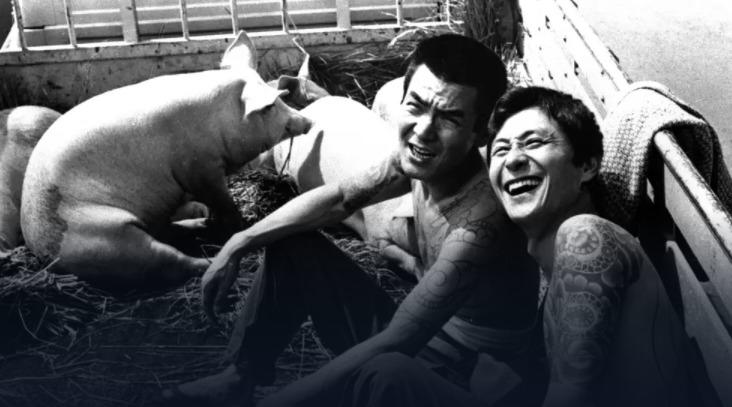 映画「まむしの兄弟 傷害恐喝十八犯」の動画フル映像
